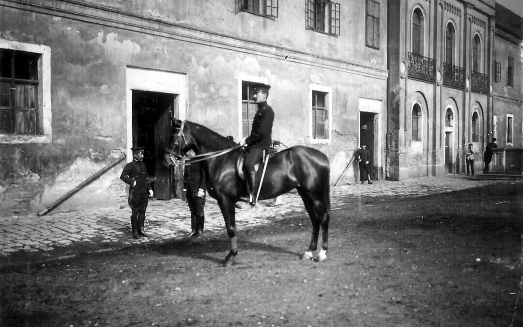 A Meidzsi-reform és a Magyar Királyi Állami Ménesbirtok